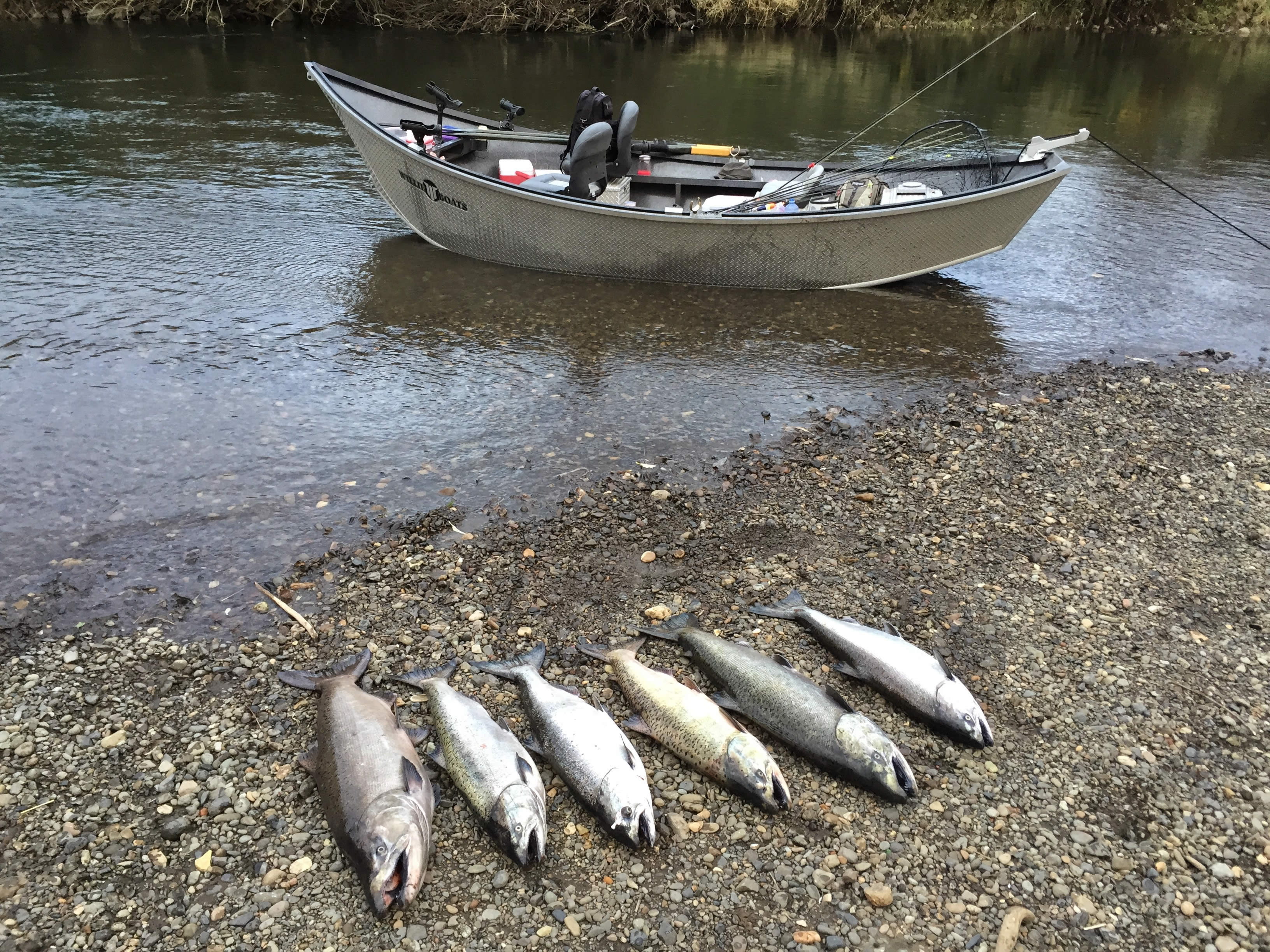 Your trip lewis and clark guide service for Tillamook bay fishing